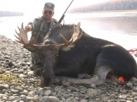 Moose & Elk Hunts