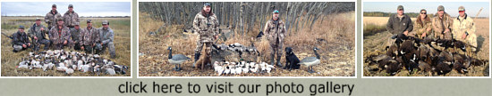 alberta waterfowl hunting